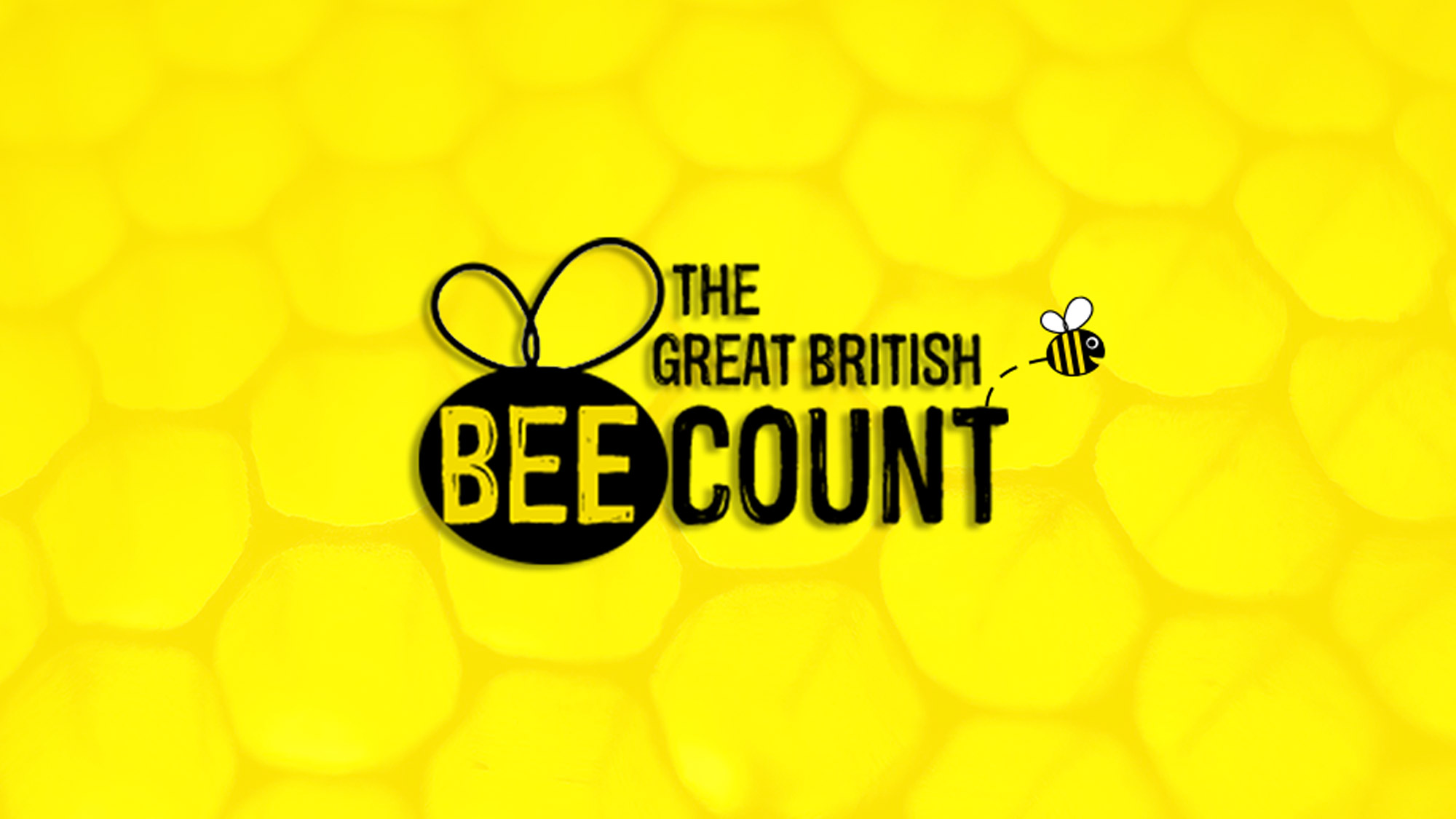British bee count i love meet and greet the i love meet and greet airport parking teams at gatwick and stansted are are supporting the great british bee count organised friends of the earth kristyandbryce Choice Image